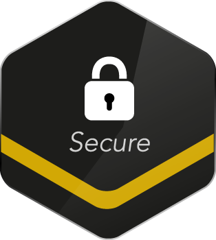 snp_secure_hexagon_314x350.png