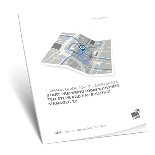 S/4HANA Guide for IT Departments Book