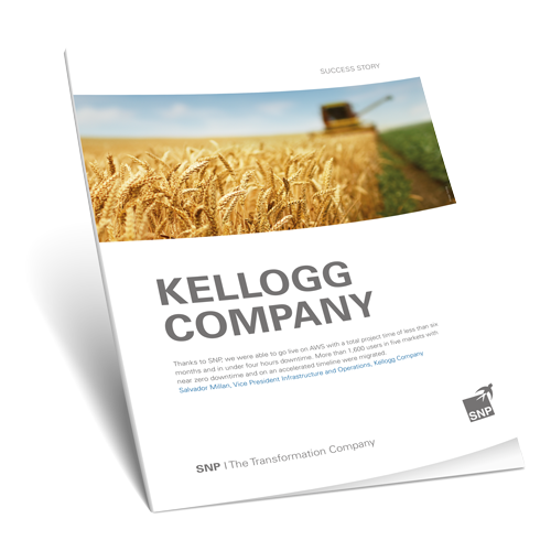 Kellogg's Migration to the AWS Cloud with Near-Zero Downtime Book