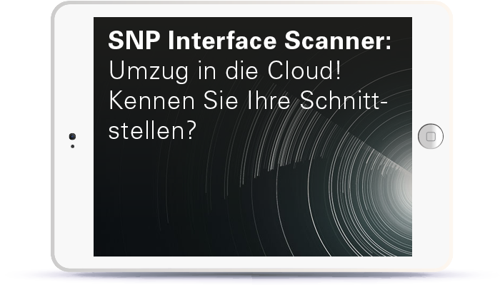 WEBINAR: SNP Interface Scanner: Umzug in die Cloud! Kennen Sie Ihre Schnittstellen? Book