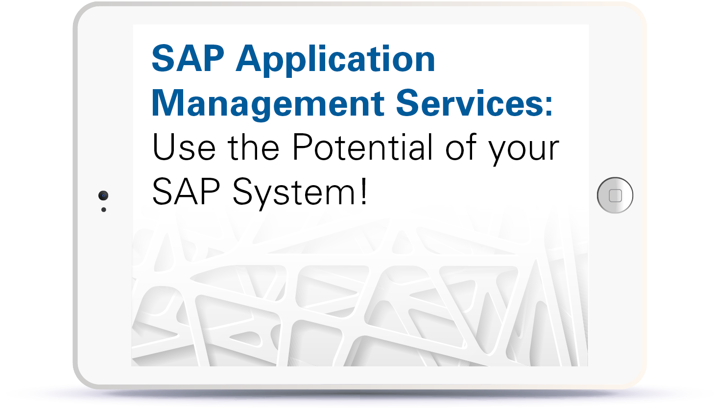 Webinar SAP Application Management Services - Use the potential of your SAP systems Book