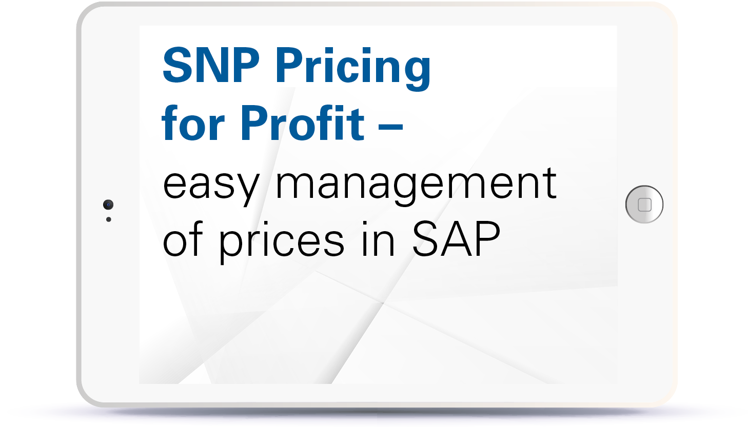 Webinar SNP Pricing for Profit - easy management of prices in SAP Book