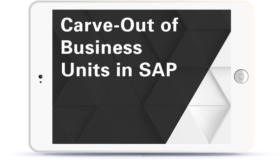 Webinar Carve Out of Business Units in SAP Book