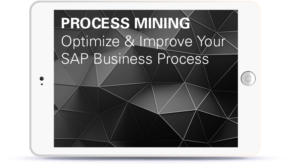 Webinar Process Mining: Optimize and Improve your Business Processes Book