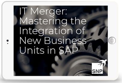 IT Merger: Mastering the Integration of New Business Units in SAP