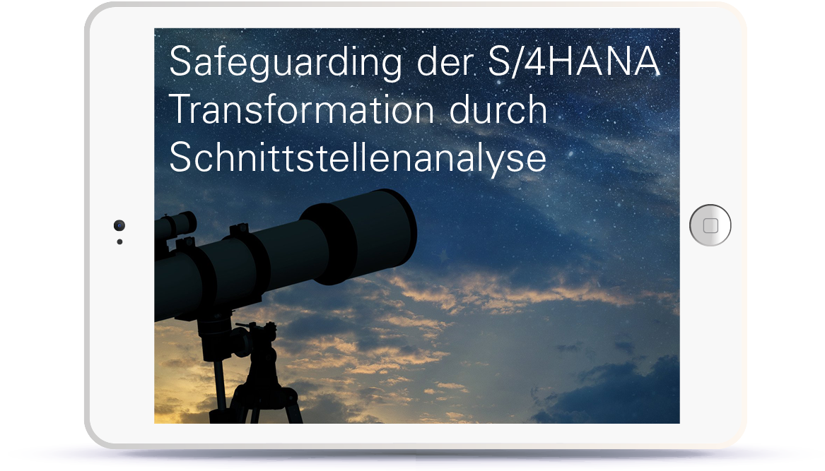 WEBINAR: Safeguarding der S/4HANA Transformation durch Schnittstellenanalyse Book